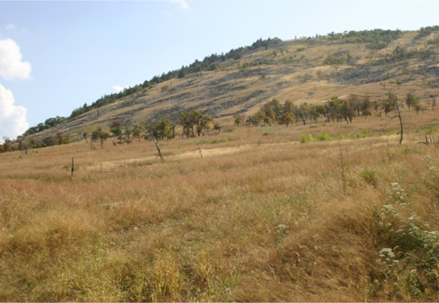 Blue Mountain in 2007