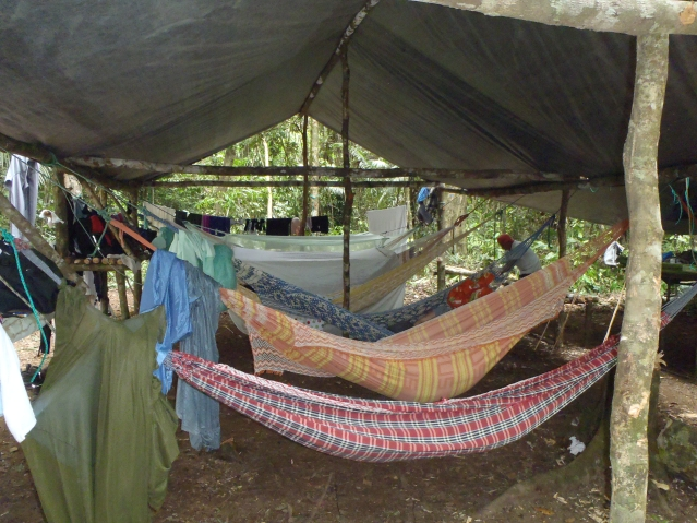 Hammocks at Camp George